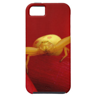 Red Hot Spider iPhone 5 Covers