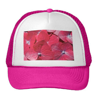 Red hydrangea cap
