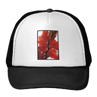 Red Iris Cap