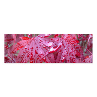 Red Japanese Maple Leaves Bookmark Business Card
