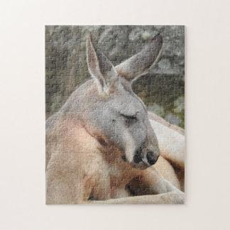 Red Kangaroo Puzzle