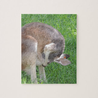 Red Kangaroo Puzzles