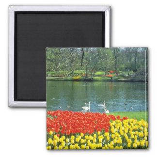 Red Keukenhof Gardens, Holland flowers Square Magnet