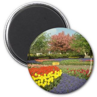Red Keukenhof Gardens near Haarlem, Netherlands fl 6 Cm Round Magnet