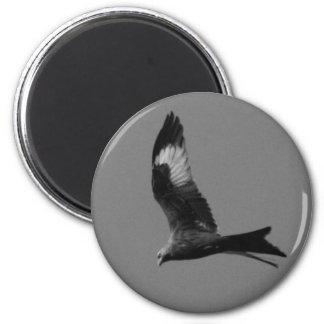 Red Kite 6 Cm Round Magnet