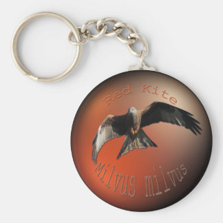 Red Kite Bird of Prey Key Ring