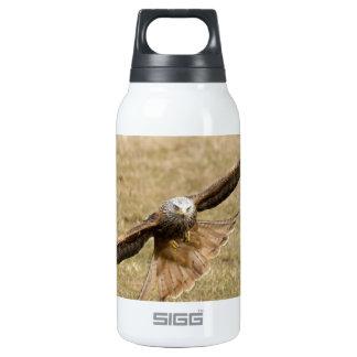 Red Kite (Milvus Milvus) Insulated Water Bottle