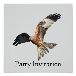 Red Kite Party Invitation