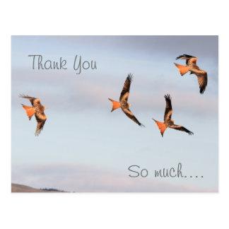 Red Kite Thank You Postcard