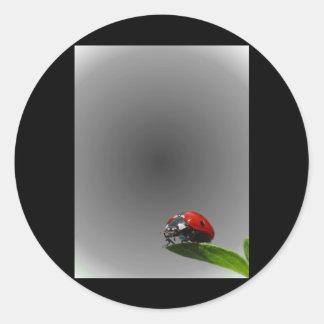 Red Lady Bug On Leaf - B W Fading Background Sticker
