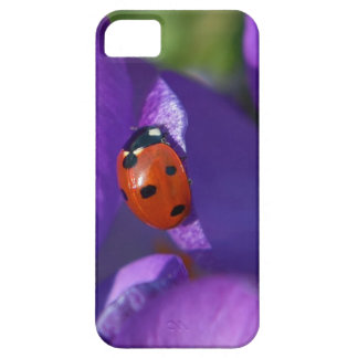 Red ladybird on crocus case for the iPhone 5
