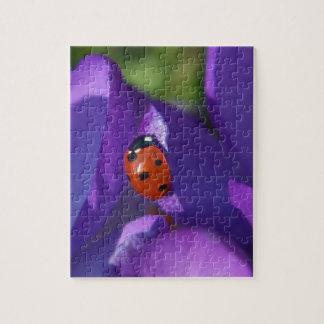 Red ladybird on crocus jigsaw puzzle