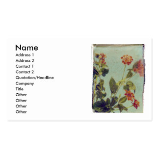 Red Lantana profile card Pack Of Standard Business Cards