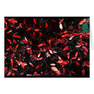 """""""Red Leaf Atlas"""" JTG Art Greeting Card"""