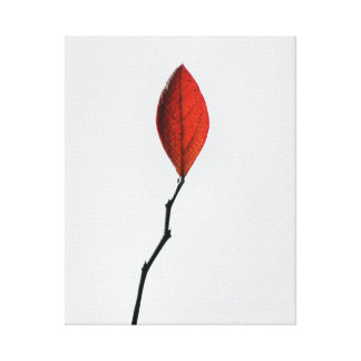 Red Leaf Canvas Canvas Prints