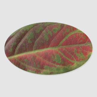 Red Leaf closeup oval sticker, sealer, label