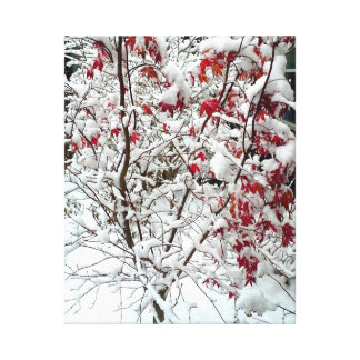 RED LEAF SNOW canvas Stretched Canvas Prints