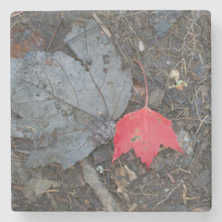 Red Leaf Stone Coaster