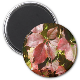 Red leaves 6 cm round magnet