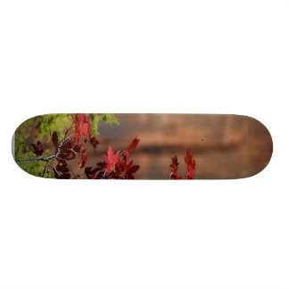 Red Leaves In Zion National Park Skate Board Decks