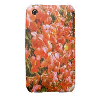 Red leaves iPhone 3g/3gs iPhone 3 Case-Mate Cases