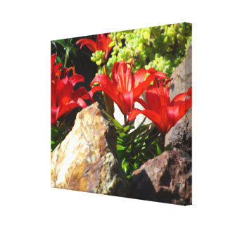Red Lily Flowers Stretched Canvas Prints