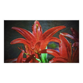 Red Lily-Textured Art Photo