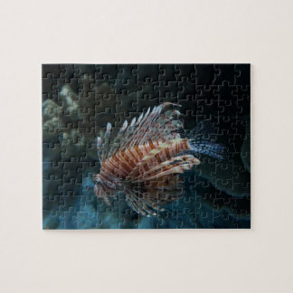 Red Lionfish Jigsaw Puzzle
