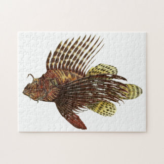 Red Lionfish Vintage Print Jigsaw Puzzle