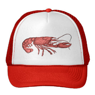 Red Lobster Baseball Hat with Retro Vintage Image