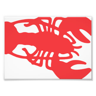 Red Lobster Photo Print
