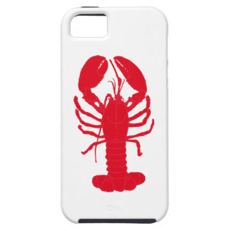 Red Lobster Tales Tough iPhone 5 Case