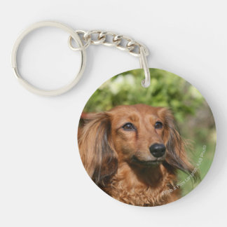 Red Long-haired Miniature Dachshund Double-Sided Round Acrylic Key Ring