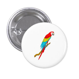 Red Macaw Parrot Pin