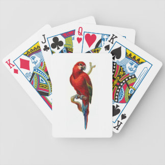 Red Macaw Parrot Bird Playing Cards