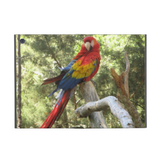 Red Macaw Parrot Cover For iPad Mini