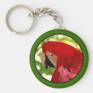 Red Macaw Parrot Keychain