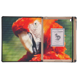 Red Macaw Parrot Portrait, Exotic Bird Cases For iPad