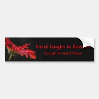 Red Macro Gerbera Flower Car Bumper Sticker