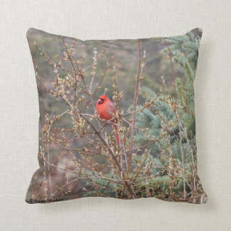 Red Male Cardinal on Forsythia Hedges Throw Pillow