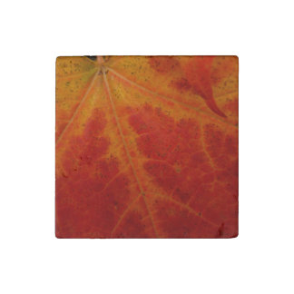 Red Maple Leaf Abstract Autumn Nature Photography Stone Magnet