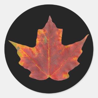 Red Maple Leaf Classic Round Sticker