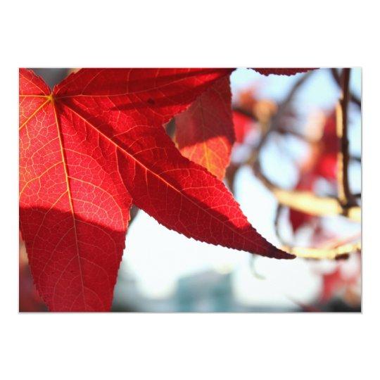 Red Maple Leaf Invitation