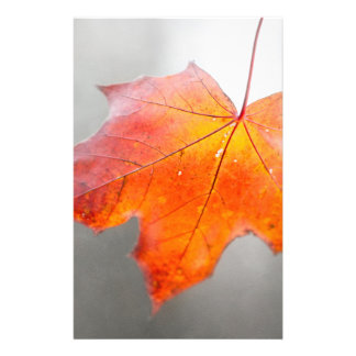 Red Maple Leaf - Velvet Autumn 14 Cm X 21.5 Cm Flyer