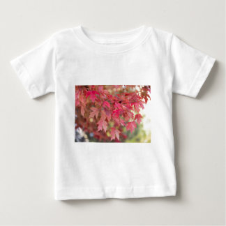 Red Maple Leaves Baby T-Shirt