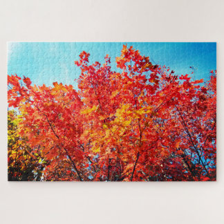 Red Maple Trees Jigsaw Puzzle