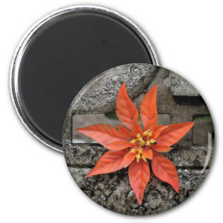 RED MARY 6 CM ROUND MAGNET