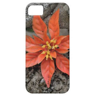 RED MARY CASE FOR THE iPhone 5