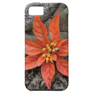 RED MARY iPhone 5 CASE