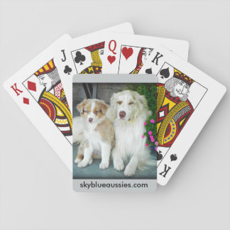 Red Merle Aussie playing cards. Poker Deck